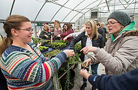 NWA Democrat-Gazette/BEN GOFF @NWABENGOFF<br /> Calissa Wall (left) of Pea Ridge learns from Lee Witty, Botanical Garden of the Ozarks horticulturalist, while making her potted arrangement Saturday, Jan. 12, 2019, during a 'Succulent Make and Take' class at Botanical Garden of the Ozarks in Fayetteville. Participants learned how to care for the water-conserving plants native to arid climates and made their own arrangement to take home.