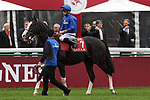 October 07, 2018, Longchamp, FRANCE - Talismanic with Mickael Barzalona up at the parade for the Qatar Prix de l'Arc de Triomphe (Gr. I) at  ParisLongchamp Race Course  [Copyright (c) Sandra Scherning/Eclipse Sportswire)]