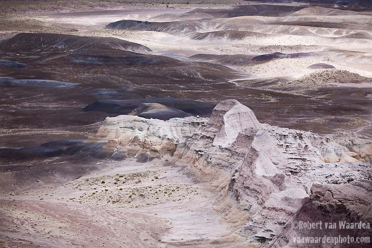 Sandy, purple hills of the Blue Mesa roll into the landscape of Petrified Forest National Park in Arizona, United States of America.