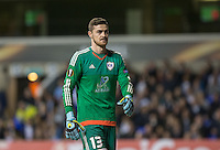 Goalkeeper Ibrahim Sehic of Qarabag FK during the UEFA Europa League match between Tottenham Hotspur and Qarabag FK at White Hart Lane, London, England on 17 September 2015. Photo by Andy Rowland.