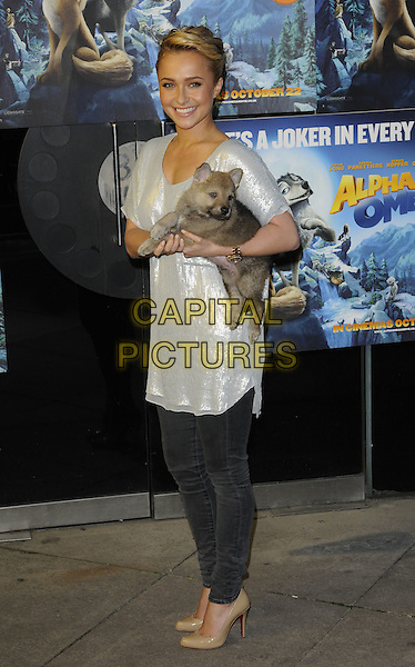 "HAYDEN PANETTIERE.at the ""Alpha & Omega"" special screening, BFI Southbank, London, .10th October 2010..full length grey gray silver shiny top holding wolf cub animal grey gray denim black skinny jeans beige nude shoes christian louboutin .CAP/CAN.©Can Nguyen/Capital Pictures."