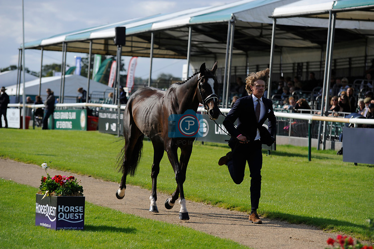 Stamford, Lincolnshire, United Kingdom, 4th September 2019, Ludwig Svennerstal (SWE) & Balham Mist during the 1st Horse Inspection of the 2019 Land Rover Burghley Horse Trials, Credit: Jonathan Clarke/JPC Images