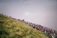 peloton coming up the last climb of the 2018 Tour: the Col d'Aubisque (HC/1709m/16.6km@4.9%)<br /> <br /> Stage 19: Lourdes &gt; Laruns (200km)<br /> <br /> 105th Tour de France 2018<br /> &copy;kramon