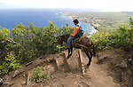 Hawaii: Molokai, the Mule Ride from the cliff tops down 1,600 feet to the leper colony at Kalaupapa. Model released..Photo himolo143-72201.Photo copyright Lee Foster, www.fostertravel.com, lee@fostertravel.com, 510-549-2202