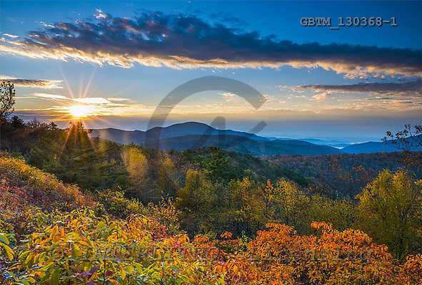Tom Mackie, LANDSCAPES, photos,+America, American, Americana, Blue Ridge Mountains, North America, Shenandoah National Park, US, USA, United States of Americ+a, Virginia, atmosphere, atmospheric, autumn, autumnal, countryside, environment, environmental, expanse, expansive, fall, fo+rest, grand view, horizontal, horizontals, inspiration, inspirational, landscape, mountain, mountains, mountainside, national+park, scenic, season, sunrise, sunset, time of day, tree, trees, wood, woodland, yellow,America, American, Americana, Blue R+,GBTM130368-1,#l#