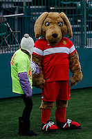 Rochester, NY - Friday April 29, 2016: Western New York Flash mascot. The Washington Spirit defeated the Western New York Flash 3-0 during a National Women's Soccer League (NWSL) match at Sahlen's Stadium.