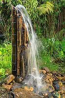 France, Gard, Générargues, LA BAMBOUSERAIE : dans le jardin aquatique, fontaine de bambous et galets.
