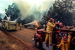 August 20, 1992 Angels Camp, California -- Old Gulch Fire— Firefighters hose down spot fires on Fullen Road.  The Old Gulch Fire raged over some 18,000 acres, destroying 42 homes while threatening the Mother Lode communities of Murphys, Sheep Ranch, Avery and Forest Meadows.