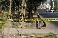 Querétaro, Qro. 30 de diciembre de 2017.- Una joven mujer perdió la vida tras ser atropellada cuando salía a pasear a su mascota en prolongación Bernardo Quintana en dirección a Avenida de la Luz adelante de geoplazas, el conductor fue detenido.