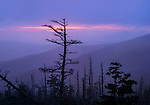 Sunset at Clingman's Dome in the Great Smoky Mountains National Park of Tennessee and North Carolina, USA