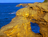 Sea arches along Atlantic Coast, Near Arecibo, Puerto Rico,  Tuna Point, Limestone formations