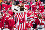 Wisconsin Badgers Mascot Bucky Badger during an NCAA College Big Ten Conference football game against the Michigan Wolverines Saturday, November 18, 2017, in Madison, Wis. The Badgers won 24-10. (Photo by David Stluka)