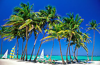 Dominican Republic, Punta Cana, Bavaro Beach. Palm trees Caribbean Sea and sail boats