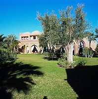 The garden leading up to the house is planted with ancient olive and palm trees
