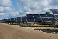 Rows of Solar Panels at a Solar Farm