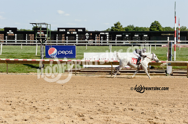 Aim Hi winning at Delaware Park on 8/9/14