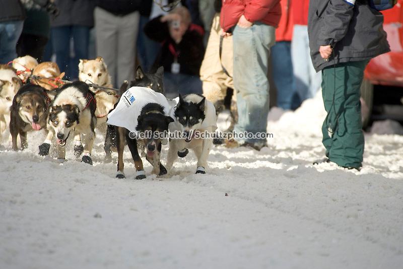 Kelley Griffin's Sled Dog Team Leaves Start 2005 Iditarod Ceremonial Start Anchorage