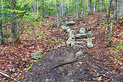 Mt Tecumseh Trail in the New Hampshire White Mountains on a wet spring day in May 2017. This staircase was built sometime after July 1, 2013. And a herd path has already formed on the right side of the steps from hikers avoiding the steps. Hikers are also avoiding the steps by using the old section of trail that is on the left side of the steps. When herd paths are not blocked off it creates more erosion issues along trails, and this defeats the purpose of building the staircase.