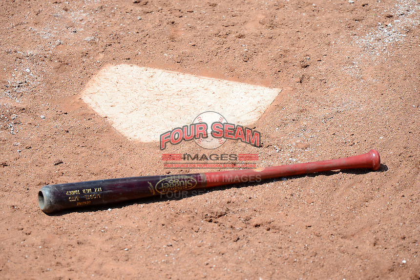 Brooklyn Cyclones bat lying on the ground next to home plate during a game against the Jamestown Jammers on August 4, 2013 at Russell Diethrick Park in Jamestown, New York.  Jamestown defeated Brooklyn 9-5.  (Mike Janes/Four Seam Images)