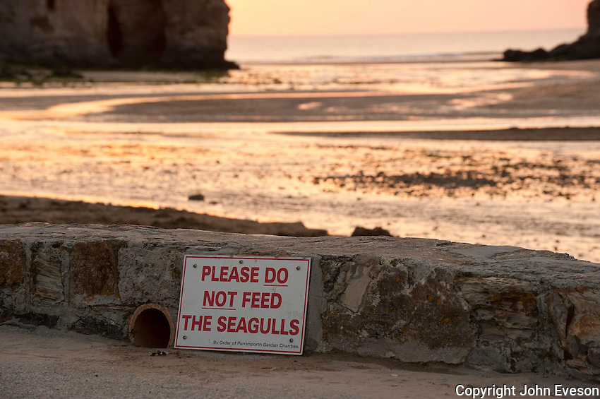 Please Do Not Feed The Seagulls sign at sunset, Perranporth, Cornwall.