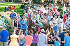 Syntax in the paddock before The Kent Stakes (gr 3) at Delaware Park on 7/18/15