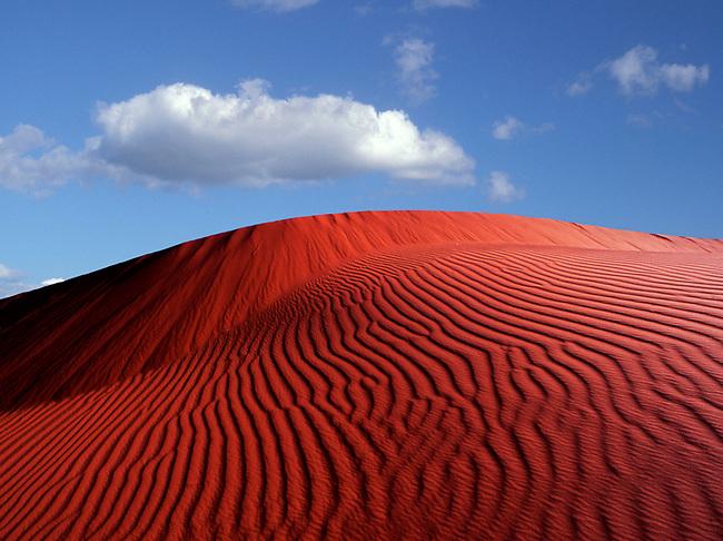 Kalihari desert, South Africa