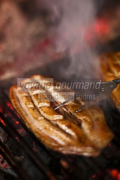 Europe/France/Midi-Pyrénées/32/Gers/Eauze: cuisson des magrets de canard à la cheminée à la Ferme-Auberge du Mounet