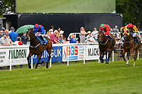 Winner of The Bathwick Tyres Handicap,Cotton Club ridden by William Carson and trained by Rod Millman during Afternoon Racing at Salisbury Racecourse on 13th June 2017