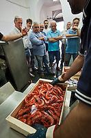 Europe/Italie/Ligurie/Imperia:Gamberoni - grosses crevettes a  la criée du port de pêche d'Imperia