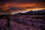 A Sierra sunset in Gardnerville, Nev., on Thursday, Dec. 17, 2015.<br /> Photo by Cathleen Allison
