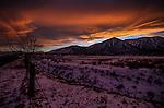 A Sierra sunset in Gardnerville, Nev., on Thursday, Dec. 17, 2015.<br /> Photo by Cathleen Allison