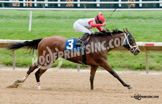 Gravitate winning at Delaware Park on 8/10/13