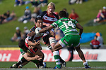 Lance Po-Ching loses control of the ball as he is tackled. Air New Zealand Cup rugby game between the Counties Manukau Steelers & Manawatu Turbos, played at Growers Stadium Pukekohe on Staurday September 20th 2008..Counties Manukau won 27 - 14 after trailing 14 - 7 at halftime.