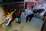 Participants run in front of Torrealta's bulls during the bull run of the San Sebastian de los Reyes Festival, near Madrid, on august 31, 2014. © Pedro ARMESTRE