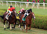 Voodoo Song  (no. 5) wins the Grade 3 Saranac Stakes for  three year olds Sept. 2 at Saratoga Race Course, Saratoga Springs, NY.  The winner, ridden by Jose Lezcano and trained by Linda Rice, won by  a neck over a closing Yoshida in the mile and an eighth race against seven opponents on the turf.    (Bruce Dudek/Eclipse Sportswire)