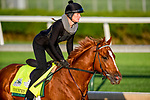 LOUISVILLE, KENTUCKY - APRIL 27: Country House, trained by William Mott, exercises in preparation for the Kentucky Derby at Churchill Downs in Louisville, Kentucky on April 27, 2019. John Voorhees/Eclipse Sportswire/CSM