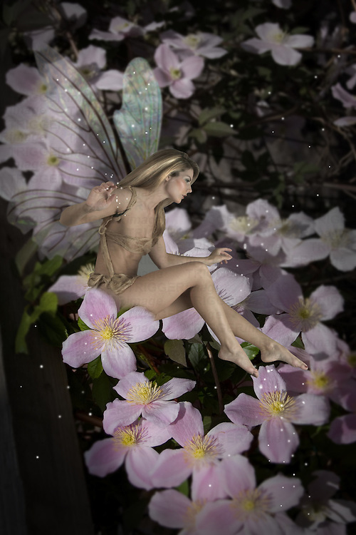 Fairy amongst flowers