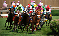 Stephanie's Kitten with John Valazquez up (red cap) wins the Edgewood  Stakes at Churchill Downs in Louisville , Kentucky on May 4, 2012.