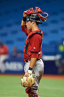 Boston Red Sox Austin Rei (28) during an instructional league game against the Tampa Bay Rays on September 24, 2015 at Tropicana Field in St Petersburg, Florida.  (Mike Janes/Four Seam Images)