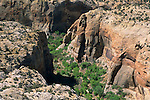 Slickrock Canyons at Calf Creek Grand Staircase Escalante Nat'l. Mon. SR 12 Scenic Byway, UTAH