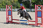 01/09/2019 - Class 2 - Unaffiliated showjumping - Brook Farm traiing centre