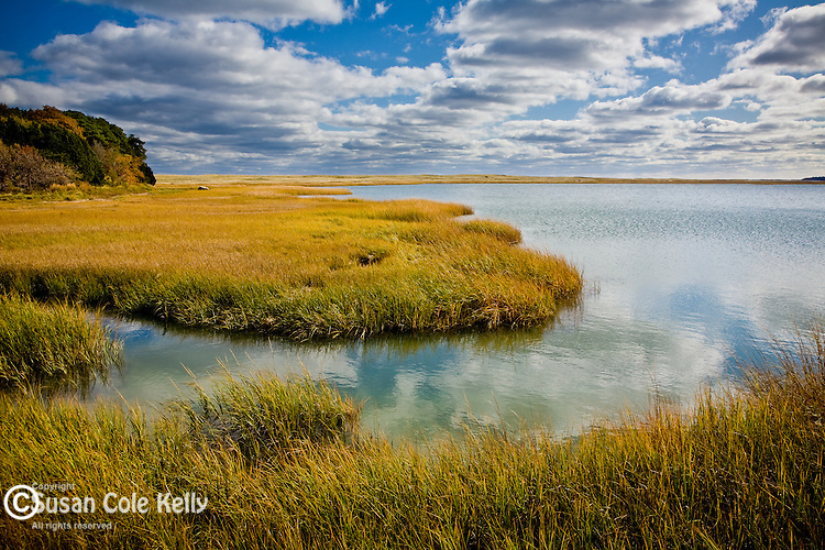 Fair weather clouds reflected in a saltwater pool at Nauset Marsh, Cape Cod National Seashore, Eastham, MA, USA