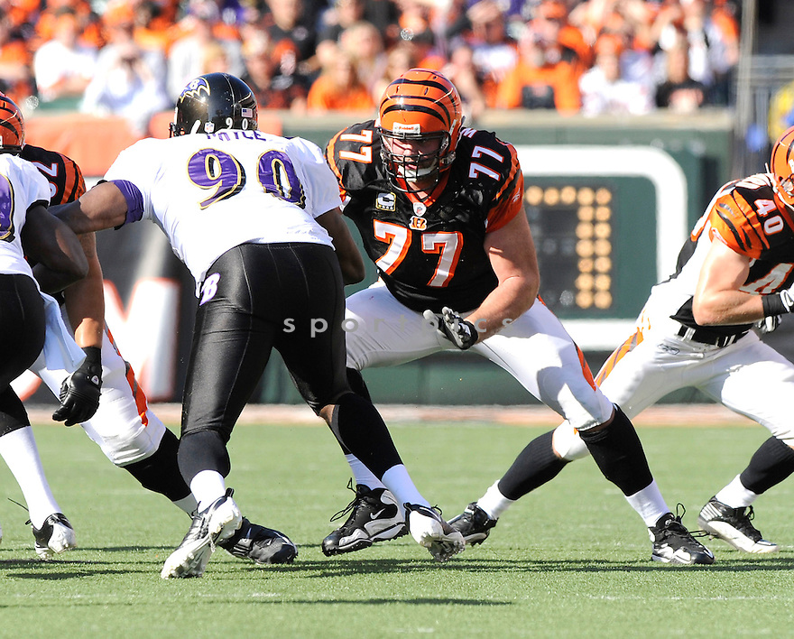 ANDREW WHITWORTH, of the Cincinnati Bengals, in action during the Bengals game against the Baltimore Ravens on November 8, 2009 in Cincinnati, OH. Bengals won 17-7.
