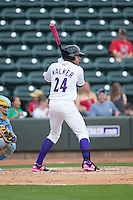 Keenyn Walker (24) of the Winston-Salem Dash at bat against the Myrtle Beach Pelicans at BB&T Ballpark on May 10, 2015 in Winston-Salem, North Carolina.  The Pelicans defeated the Dash 4-3.  (Brian Westerholt/Four Seam Images)