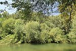 Israel, Upper Galilee, Senir (Hazbani) stream Nature Reserve