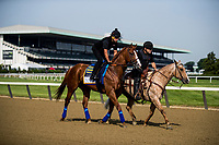 ELMONT, NY - JUNE 08: Justify with Humberto Gomez aboard is ponied on the track by Jimmy Barnes after before completing preparations for the 150th Belmont Stakes at Belmont Park on June 08, 2018 in Elmont, New York. (Photo by Alex Evers/Eclipse Sportswire/Getty Images)
