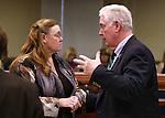 Nevada Assemblywoman Maggie Carlton, D-Las Vegas, talks with Assembly Speaker John Hambrick, R-Las Vegas, on the Assembly floor at the Legislative Building in Carson City, Nev., on Friday, Feb. 13, 2015. <br /> Photo by Cathleen Allison