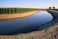 Irrigation canal near corn field Bakersfield California