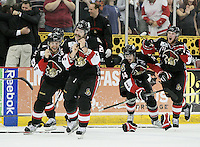 Binghamton Senators players rush the ice at the end of game six of the AHL Calder Cup Finals, Tuesday, June 7, 2011, in Houston. Binghamton won 3-2 to win the championship. (Darren Abate/pressphotointl.com/AHL)