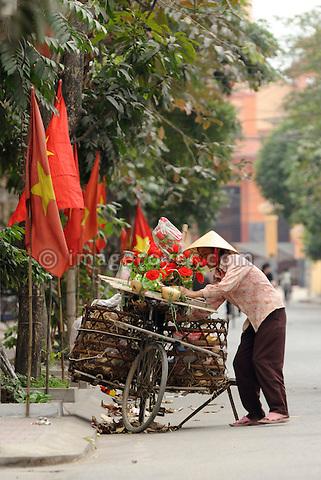 Asia, Vietnam, Ninh Binh. Street vendor selling flowers.